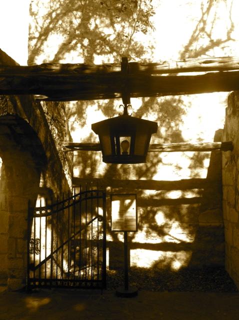 Alamo - Jennifer Allison