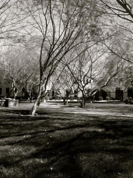 St. Mary's Basilica, Phoenix Arizona - Jennifer Allison
